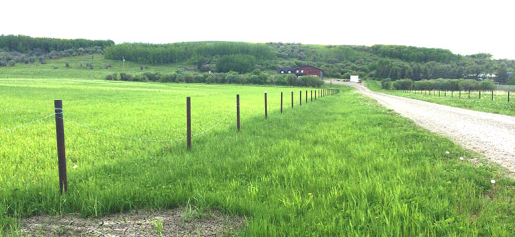 Acreage fencing solutions for southern alberta